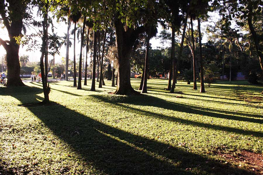 O-que-fazer-no-Parque-da-Cidade-Sarah-Kubitschek